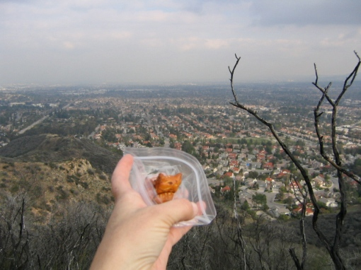 Peanut Butter Preztels with a View