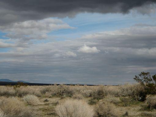 desertview2